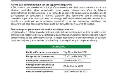 Técnico Bibliotecario – 02/2021