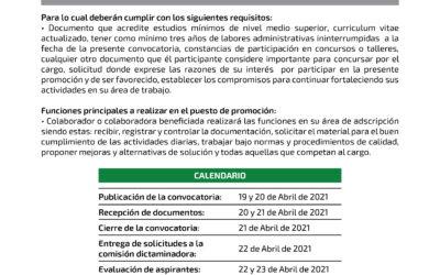 Secretaria de director de área – 03/2021